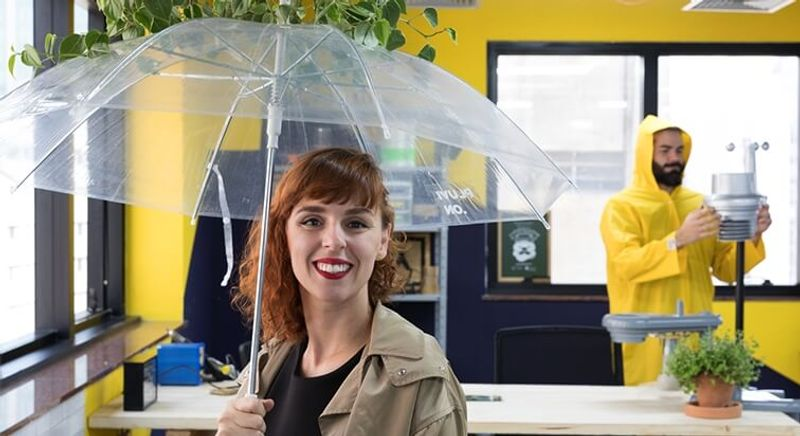 Empresa inova na decoração e negócio inspirados na chuva | Movimentos - Episódio 5